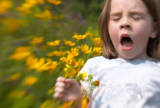 pollinjz